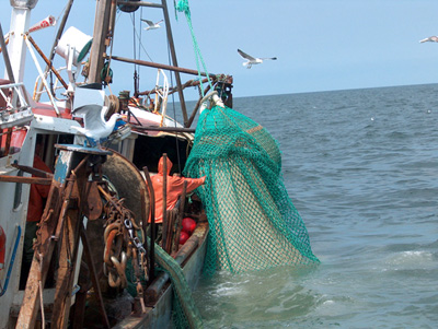 industrifiskeri